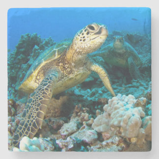 Turtle Pair Stone Coaster