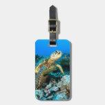 Turtle Pair Travel Bag Tag