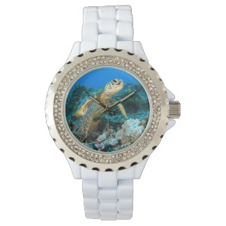 Turtle Pair Watches