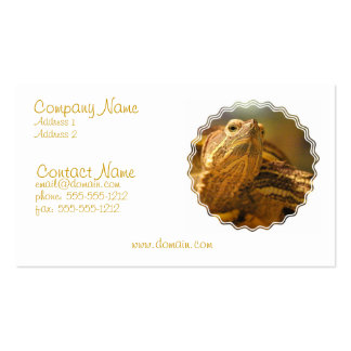 Turtle Photo Business Card