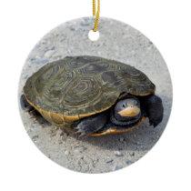 Turtle Photo Ceramic Ornament