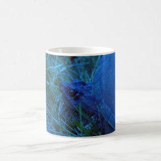 Turtle picture coffee mug