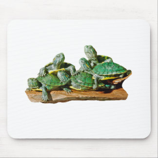 Turtle Picture Mousepad