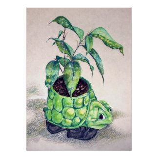 Turtle planter poster