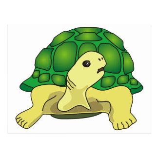 Turtle Postal