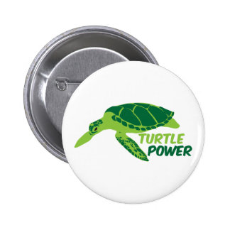 Turtle power with green turtle pinback button