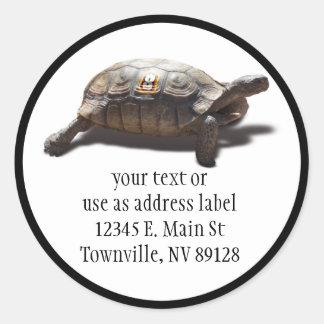 Turtle Racer #8 Round Stickers