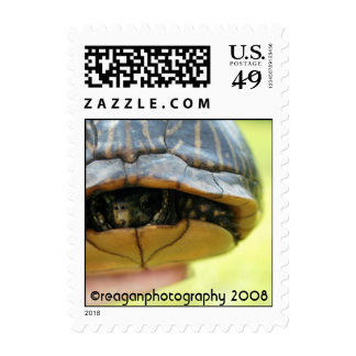 turtle, reaganphotography 2008 postage stamps