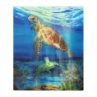 Turtle Reef Fine Art Print on Metal