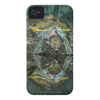 Turtle Reflection iPhone 4 Cover