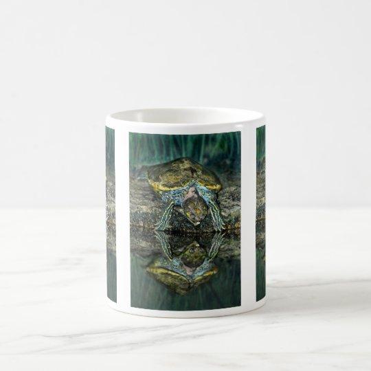Turtle Reflection Mug