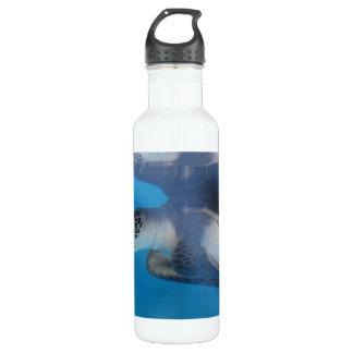 Turtle Reflections 24oz Water Bottle