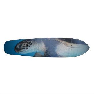 Turtle Reflections Skateboard Decks