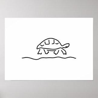 turtle reptiles tanks