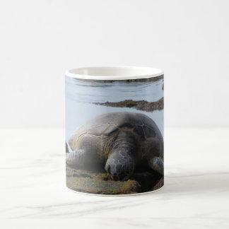 Turtle Resting On The Rocks Coffee Mug