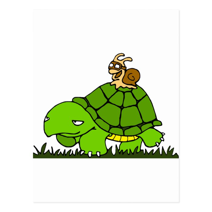 Turtle ride postcard