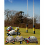 Turtle Rugby Photo Sculptures