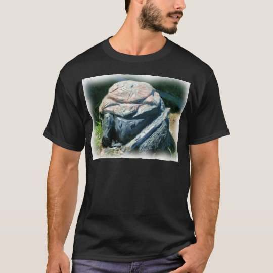 turtle sculpting_Painting T-Shirt