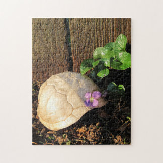 Turtle Shell At Sunset Jigsaw Puzzle