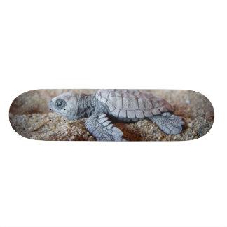 turtle skateboard deck