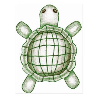 Turtle Sketch Postcard