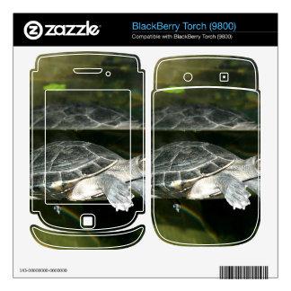 Turtle Skin For BlackBerry