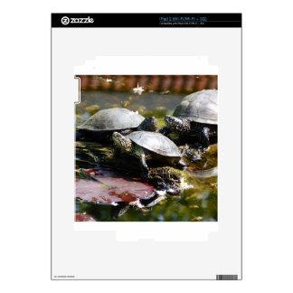 Turtle iPad 2 Skin
