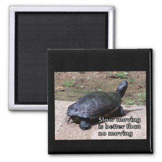 turtle slow Magnet