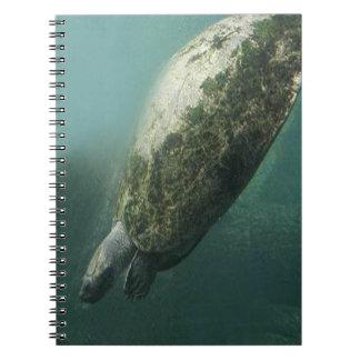 Turtle Spiral Photo Notebook