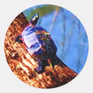 Turtle Sticker