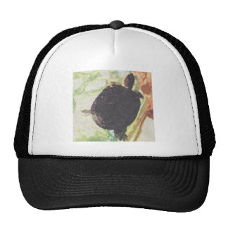 turtle Swim Trucker Hats