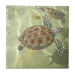Turtle Tile