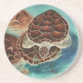 Turtle Time Coaster