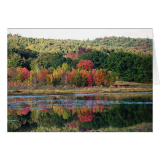 """Turtle Town Pond"" Greeting Card"