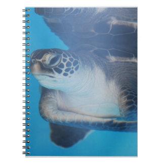 Turtle Underwater Spiral Notebook