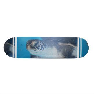 Turtle Underwater Skateboard