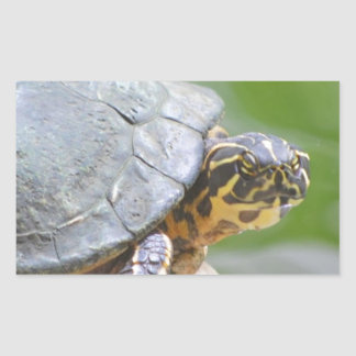 Turtle with Hard Shell Rectangular Sticker