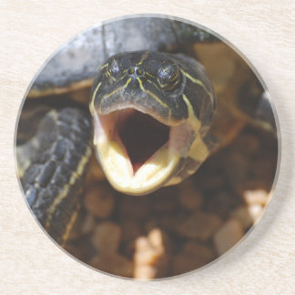Turtle with Mouth Open Coaster