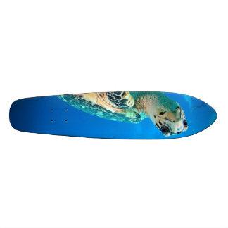 turtleboard patin