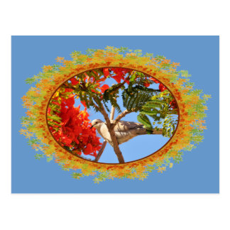 Turtledove in a flowering tree in frame of leaves postcard