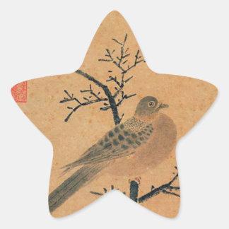 Turtledove que pide lluvia de Shen Zhou Pegatina En Forma De Estrella