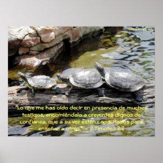 Turtles—2 Timoteo 2:2 Print