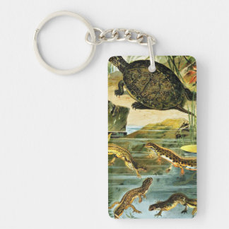Turtles and Newts Vintage Drawing Keychain