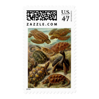 Turtles and Tortoises Postage