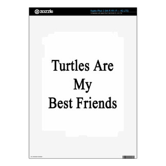 Turtles Are My Best Friends iPad 3 Skins