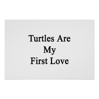 Turtles Are My First Love Poster