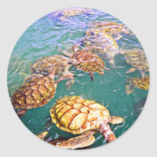 Turtles at Play Classic Round Sticker