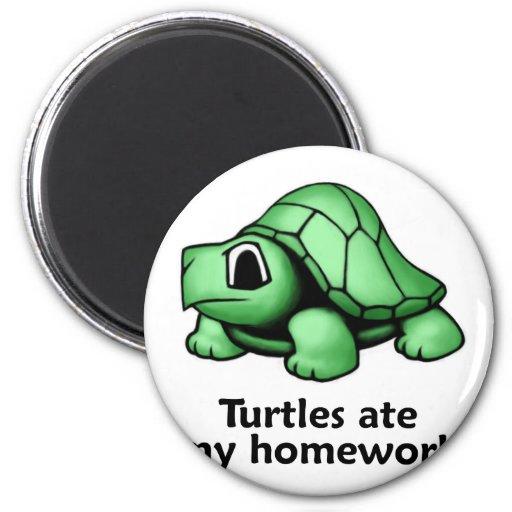 Turtles ate my Homework 2 Inch Round Magnet