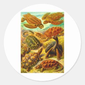 Turtles Classic Round Sticker