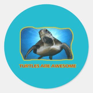 TURTLES' DESIGNS CLASSIC ROUND STICKER